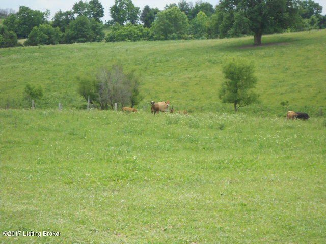 Additional photo for property listing at 430 Goodlett  Salvisa, Kentucky 40372 United States