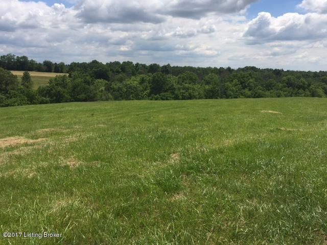 Additional photo for property listing at 1006 Wolfpen Branch  Sulphur, Kentucky 40070 United States