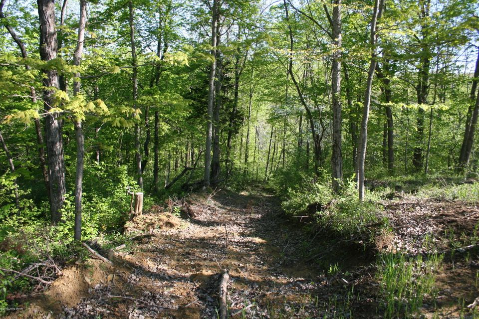 Additional photo for property listing at Lot 4&5 MORTON RIDGE  Bedford, Kentucky 40006 United States