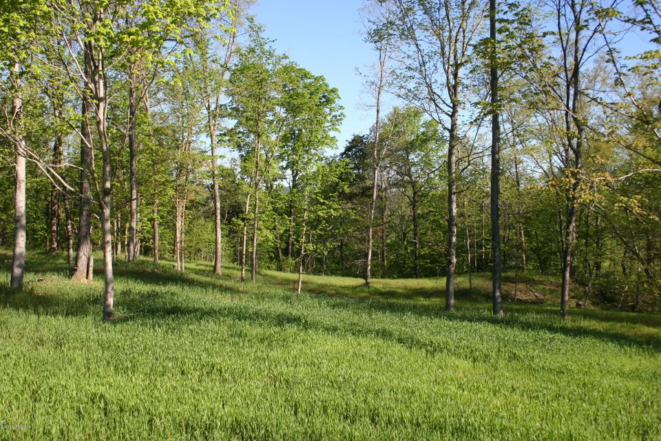 Land for Sale at Lot 3 Morton Ridge Bedford, Kentucky 40006 United States