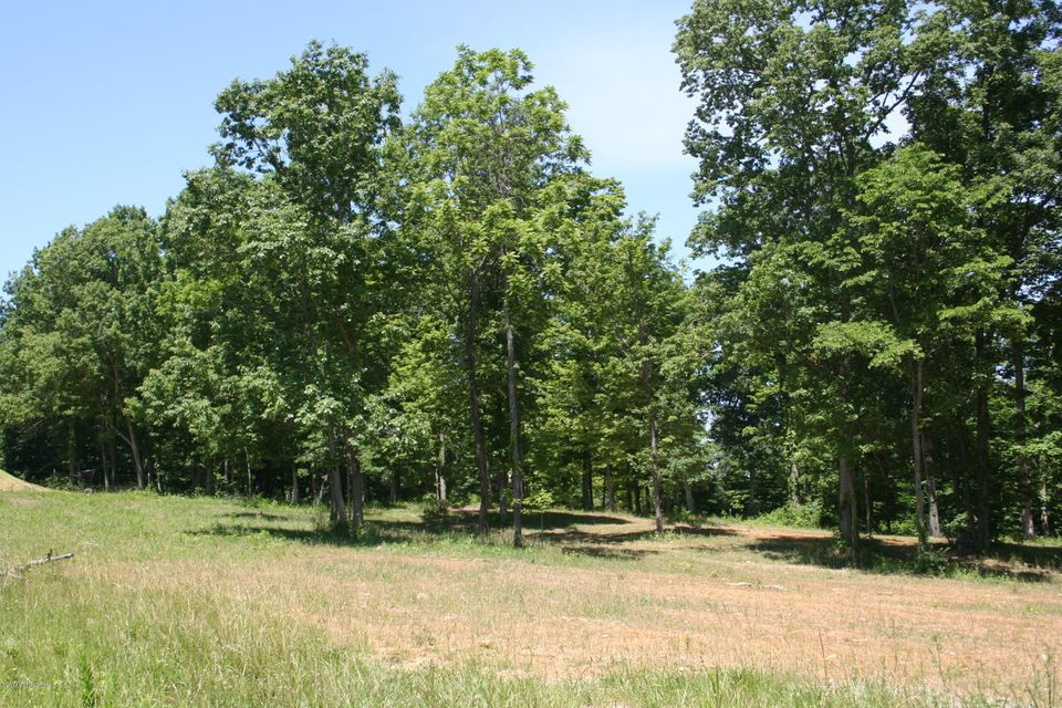 Additional photo for property listing at Lot 3 Morton Ridge Lot 3 Morton Ridge Bedford, Kentucky 40006 United States