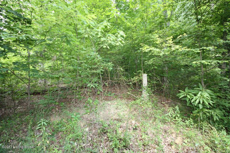Additional photo for property listing at 289 Hooper Barton  Leitchfield, Kentucky 42754 United States