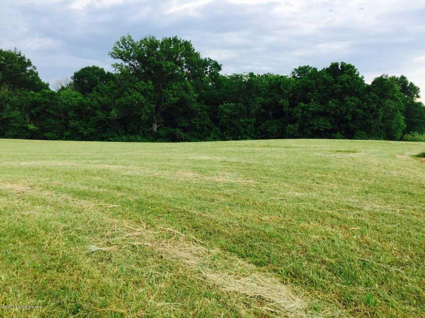 Land for Sale at Cecil Noel Bloomfield, Kentucky 40008 United States