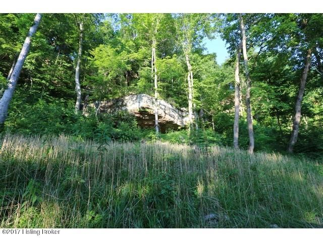 Additional photo for property listing at 36 Elm Hill  McDaniels, Kentucky 40152 United States