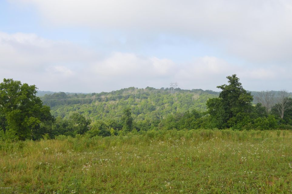 Land for Sale at 850 Georges Creek Carrollton, Kentucky 41008 United States