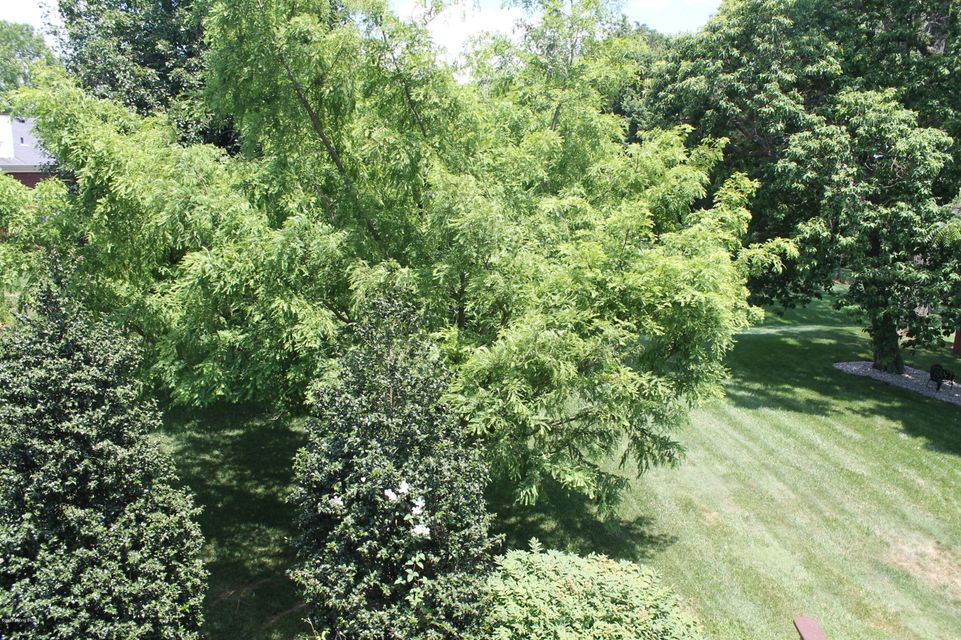 Additional photo for property listing at 11421 Whitney Hill Road  Louisville, Kentucky 40299 United States