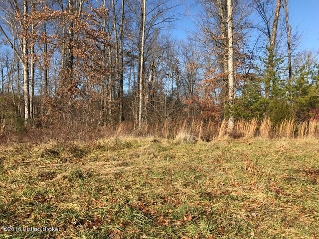 Land for Sale at 23 Blakenrod 23 Blakenrod Coxs Creek, Kentucky 40013 United States