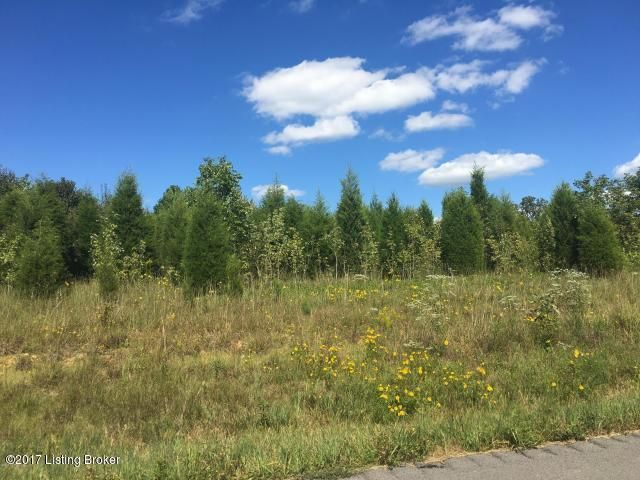 Land for Sale at Lot 030 Liberty Battletown, Kentucky 40104 United States