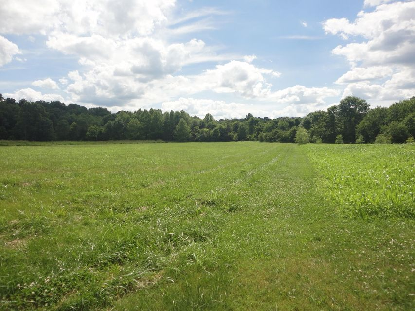 Additional photo for property listing at 205 Spinpointe Road  Fisherville, Kentucky 40023 United States