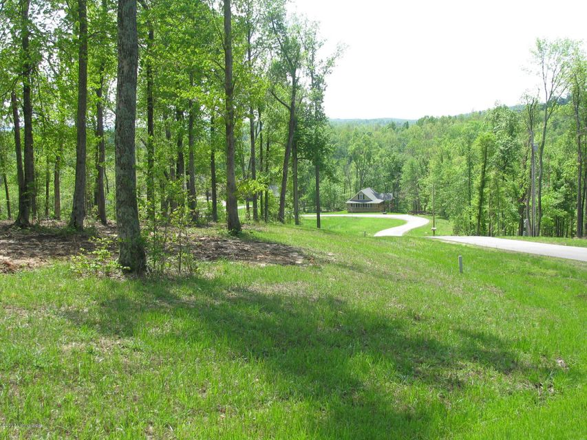 Additional photo for property listing at 1070 Patriots Landing  Falls Of Rough, Kentucky 40119 United States