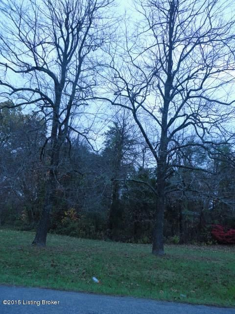 Additional photo for property listing at Lot 33 Elm Lot 33 Elm Radcliff, Kentucky 40160 United States