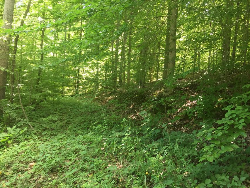 Additional photo for property listing at Edwards Cemetery  Falls Of Rough, Kentucky 40119 United States