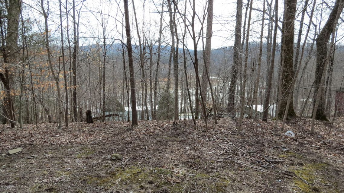 Land for Sale at 6 Woodland Cub Run, Kentucky 42729 United States