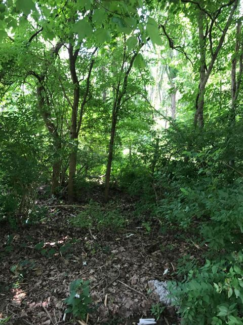 Additional photo for property listing at 335 Wooldridge  Pewee Valley, Kentucky 40056 United States