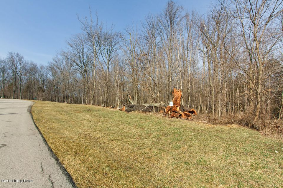 Additional photo for property listing at Lot 368 Persimmon Ridge Lot 368 Persimmon Ridge Louisville, Kentucky 40245 United States