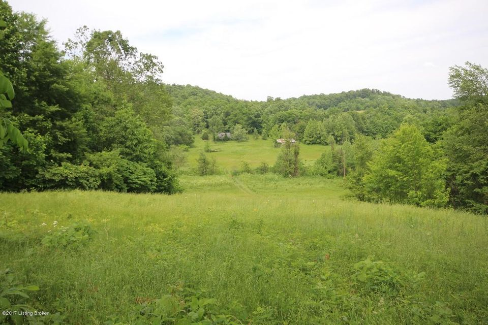 Land for Sale at 1000 Wilson Church Caneyville, Kentucky 42721 United States