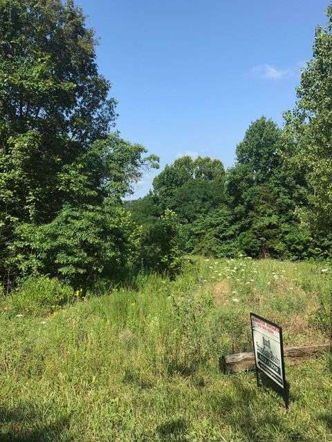 Land for Sale at 1171 Pine Ridge Battletown, Kentucky 40104 United States