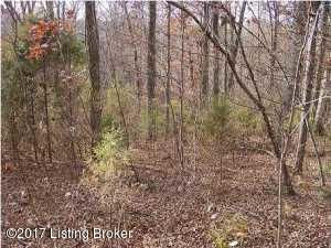 Land for Sale at 26 Tules Landing Westview, Kentucky 40178 United States