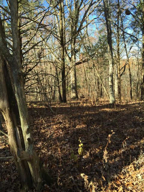Additional photo for property listing at 5350 Bardstown  Waddy, Kentucky 40076 United States