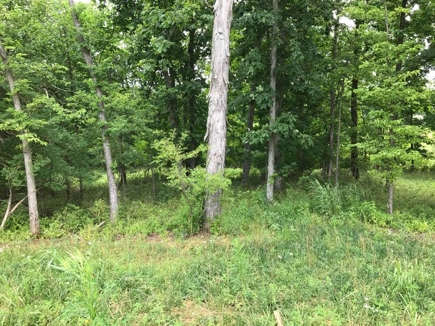 Land for Sale at Lot 352 E Zaynate Louisville, Kentucky 40245 United States