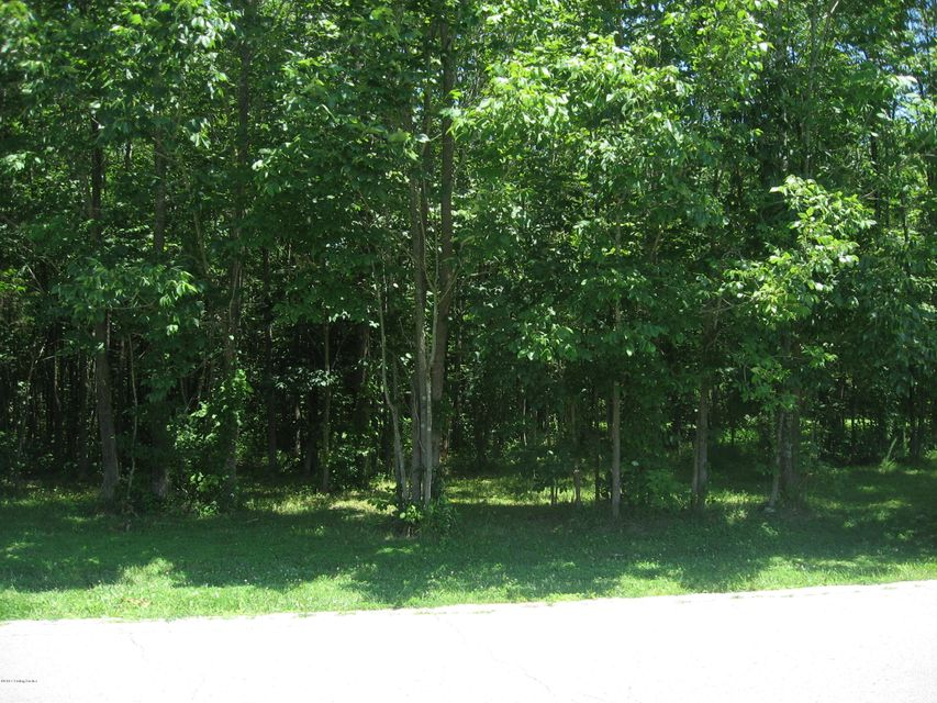 Additional photo for property listing at Lot 20 Leisure Lot 20 Leisure West Point, Kentucky 40177 United States