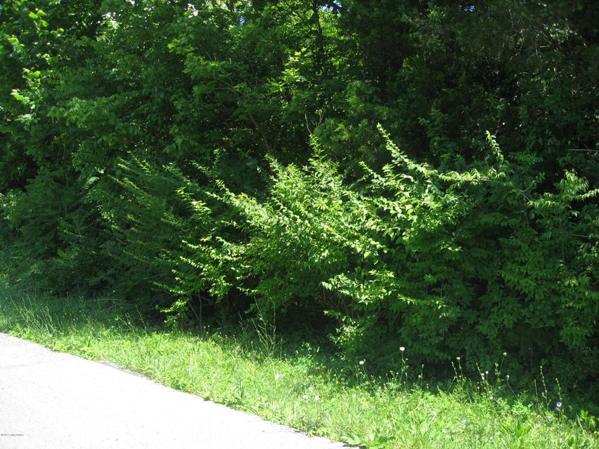 Land for Sale at Lot 19 Leisure West Point, Kentucky 40177 United States
