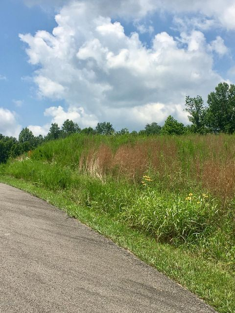 Additional photo for property listing at Lot 197 Green Farm Resort Lot 197 Green Farm Resort Falls Of Rough, Kentucky 40119 United States