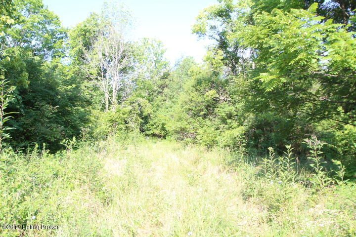 Additional photo for property listing at Bonds Mill Bonds Mill Lawrenceburg, Kentucky 40342 United States