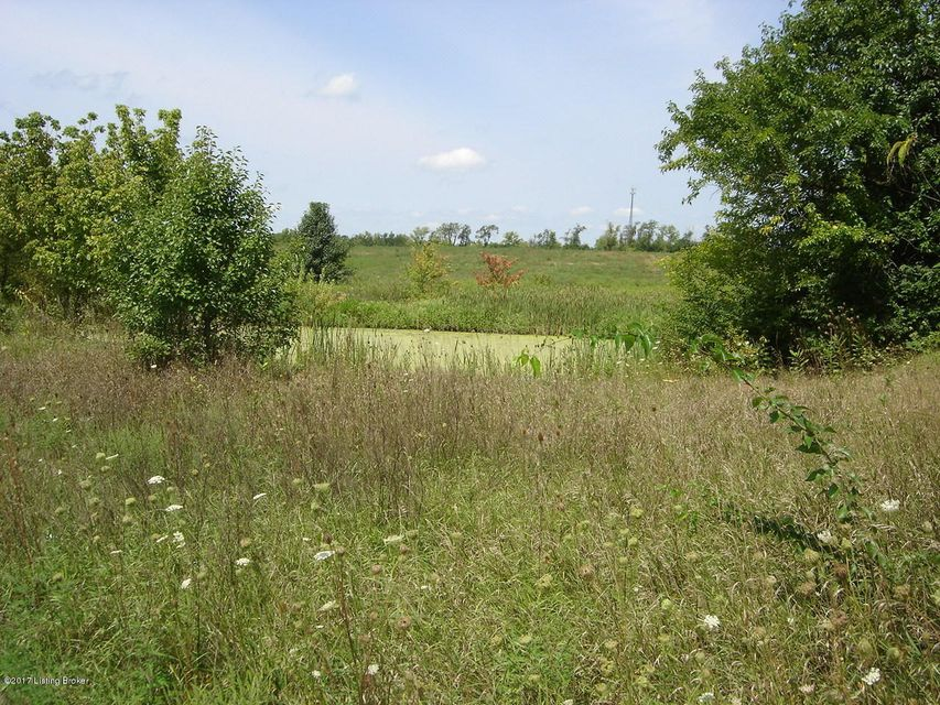 Land for Sale at Hwy 157 New Castle, Kentucky 40050 United States