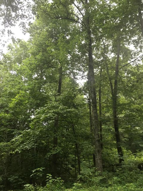 Additional photo for property listing at 305 Mora Pullen Road  Hudson, Kentucky 40145 United States