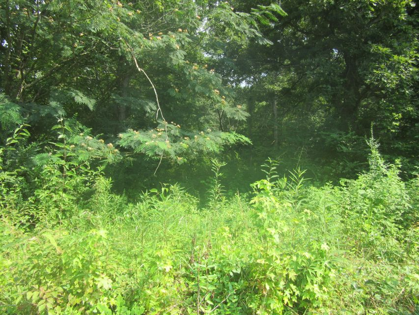 Additional photo for property listing at Forest Hill Forest Hill Shepherdsville, Kentucky 40165 United States