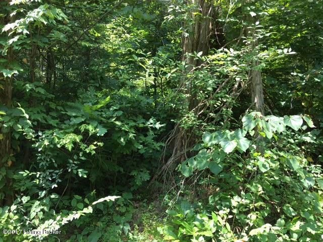 Land for Sale at 350 Carlie 350 Carlie Clarkson, Kentucky 42726 United States