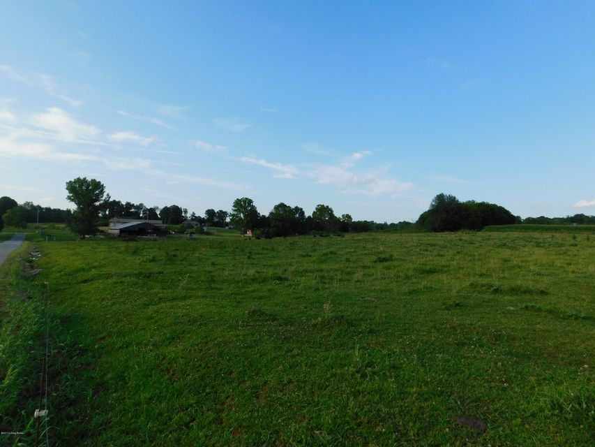 Additional photo for property listing at Alex  Falls Of Rough, Kentucky 40119 United States