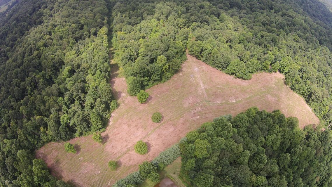 Land for Sale at 5498 Reece Hurt 5498 Reece Hurt Breeding, Kentucky 42715 United States