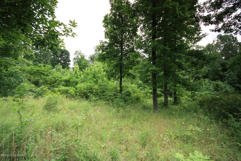Additional photo for property listing at Lot 16 Grant Ridge  Leitchfield, Kentucky 42754 United States
