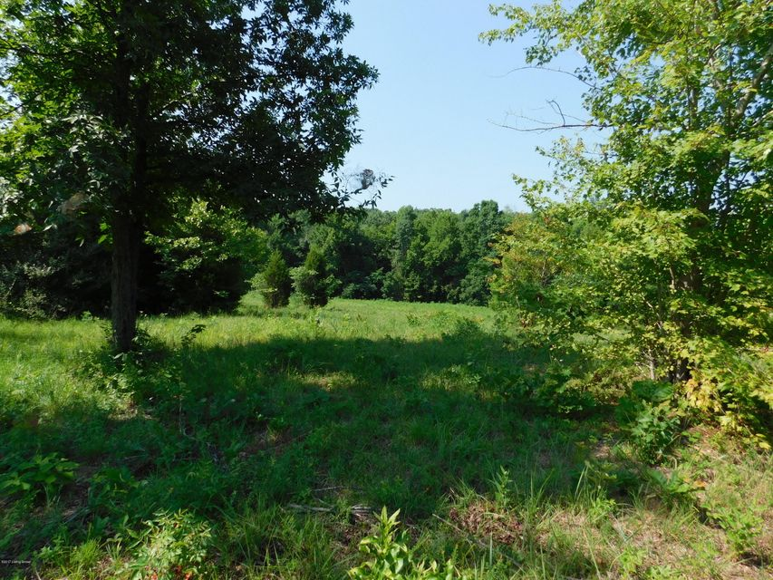 Land for Sale at Griffith Falls Of Rough, Kentucky 40119 United States
