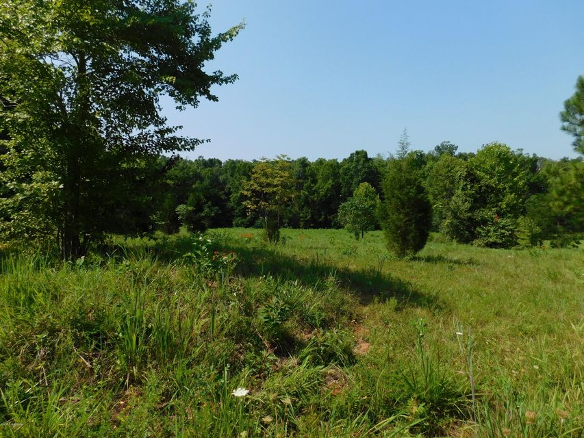 Additional photo for property listing at Griffith  Falls Of Rough, Kentucky 40119 United States