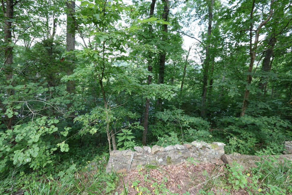 Additional photo for property listing at Lot 8 Hickory Grove  Leitchfield, Kentucky 42754 United States