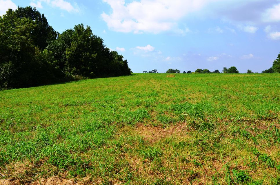 Land for Sale at Lot C Overlook Lot C Overlook New Castle, Kentucky 40050 United States