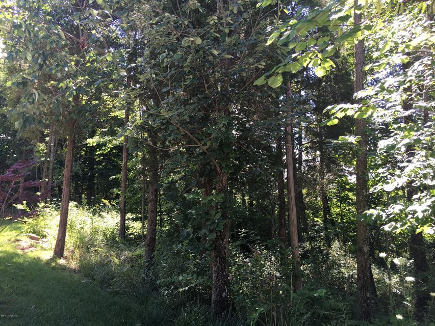 Additional photo for property listing at 411 Wood Springs  La Grange, Kentucky 40031 United States