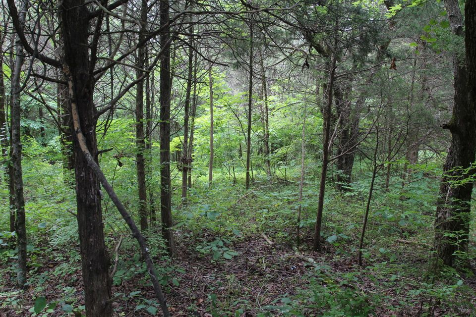 Additional photo for property listing at Lot 30 Hillvale  Pendleton, Kentucky 40055 United States