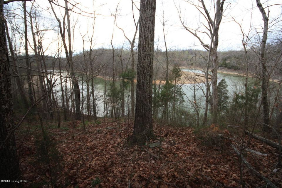 Land for Sale at 28 Mercer Bend 28 Mercer Bend Leitchfield, Kentucky 42754 United States