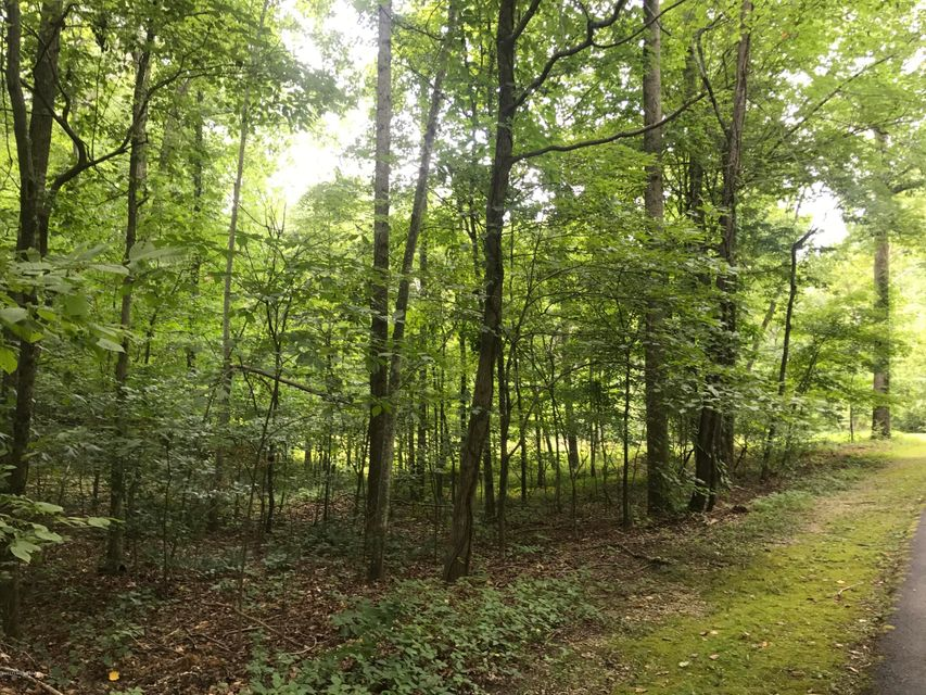 Additional photo for property listing at 318 Lakeshore 318 Lakeshore Leitchfield, Kentucky 42754 United States