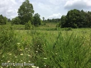 Additional photo for property listing at 2200 froedge dubree 2200 froedge dubree Summer Shade, Kentucky 42166 United States