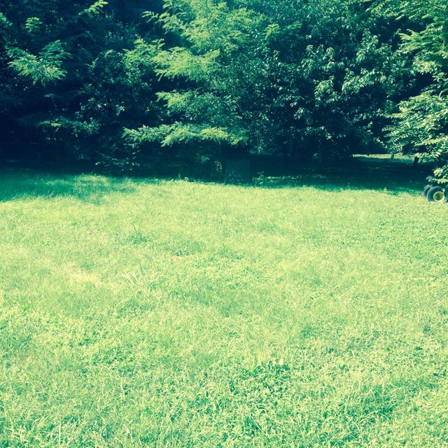 Land for Sale at S 4th Bardstown, Kentucky 40004 United States