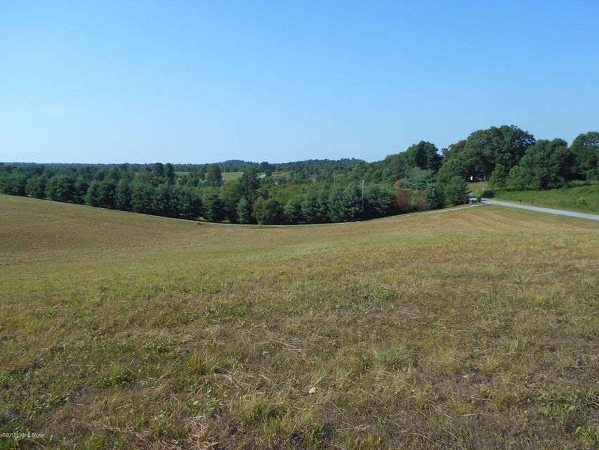 Additional photo for property listing at Bryant Ridge  Caneyville, Kentucky 42721 United States