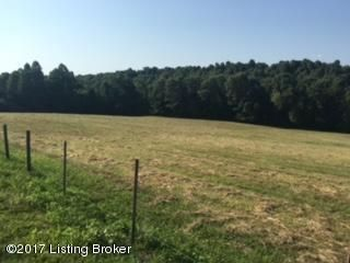 Additional photo for property listing at Bryant Ridge Bryant Ridge Caneyville, Kentucky 42721 United States
