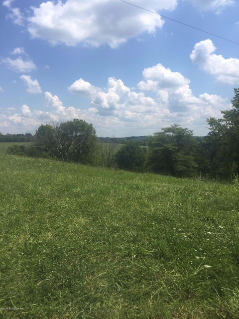 Land for Sale at 1 Kays Lawrenceburg, Kentucky 40342 United States