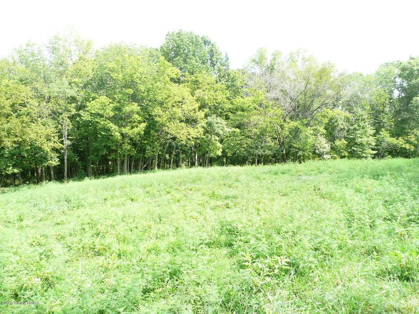 Land for Sale at 770 Mike Brown 770 Mike Brown Taylorsville, Kentucky 40071 United States