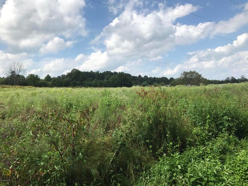 Additional photo for property listing at 2171 BEAVER DAM CREEK 2171 BEAVER DAM CREEK Leitchfield, Kentucky 42754 United States